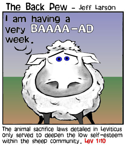 this bible cartoon features the fragile self-esteem of sheep during the time of Leviticus