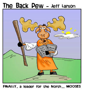 christian cartoons, deer cartoons, mooses cartoons, moose cartoons