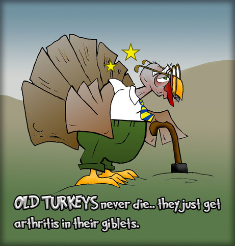 Thanksgiving Old Turkeys The