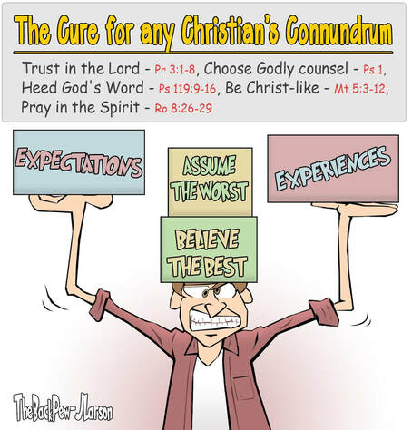 This Christian Cartoon features scripture truths for all of  life's challenges
