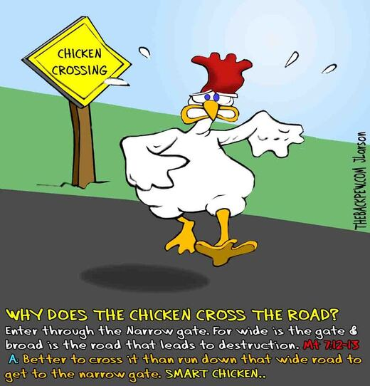 This christian cartoon features the old chicken crossing the road riddle referencing Matthew 7:13