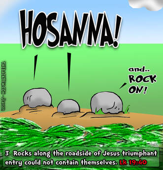 This Palm Sunday cartoon features  3 rocks crying out Hosanna during Jesus triumphant entry